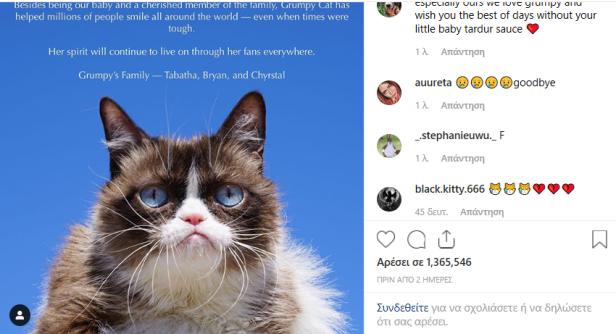 Grumpy-Cat-2-Smartphonegreece.jpg